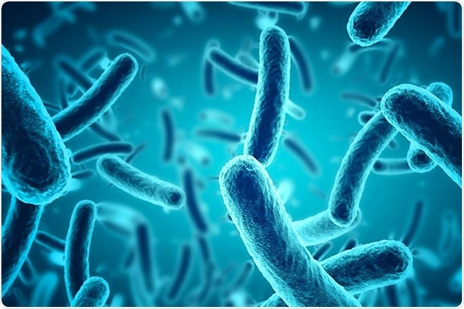 University of Manchester PhD: A role for the microbiome in the response of skin to ultraviolet radiation
