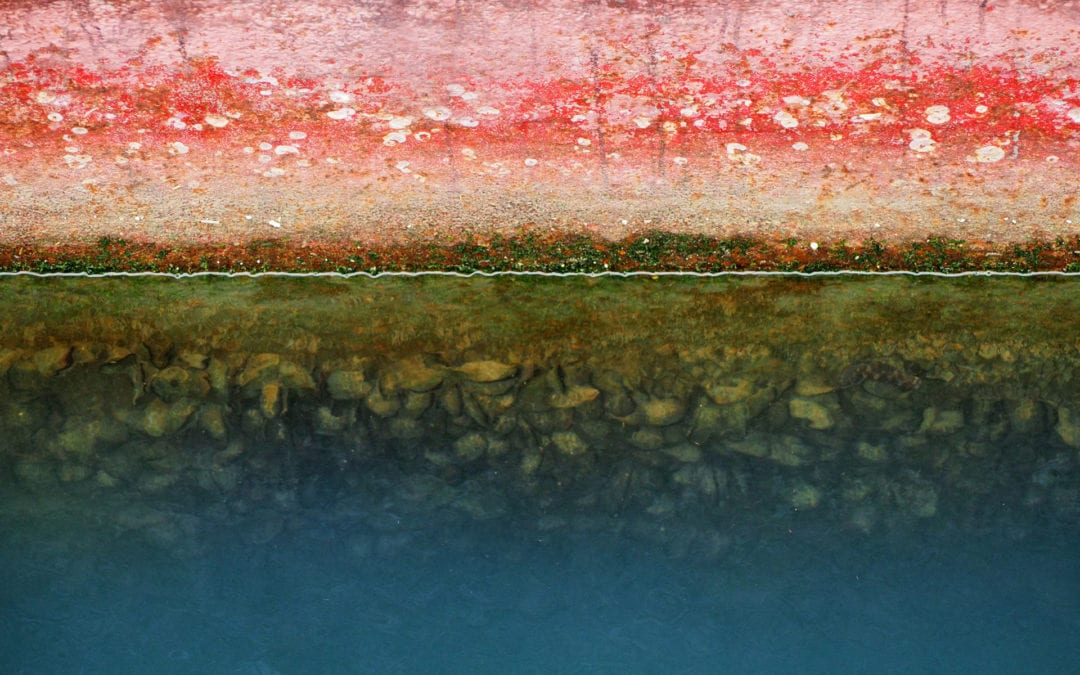 Highlights from our Marine Biofouling Webinars