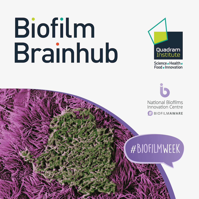 Biofilm Brainhub