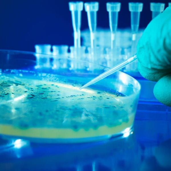 NBIC Confirm Funding of a Further 18 Projects Tackling and Exploiting Biofilms